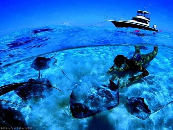 plongee sous-marine Tahiti